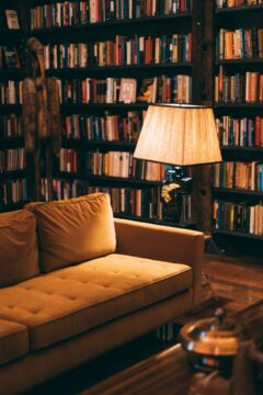 Couch by books.
